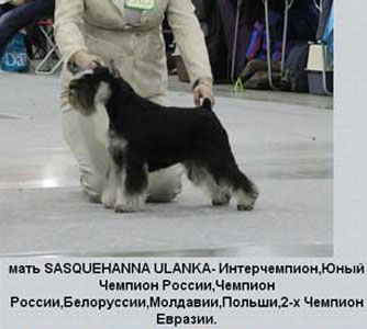 http://zwergi.narod.ru/2013/mama.jpg
